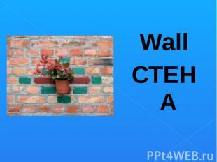 WallСТЕНА