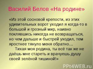 Василий Белов «На родине» «Из этой сосновой крепости, из этих удивительных ворот