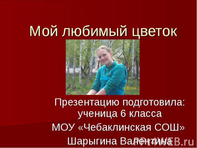Мой любимый цветок Презентацию подготовила: ученица 6 классаМОУ «Чебаклинская СОШ» Шарыгина Валентина