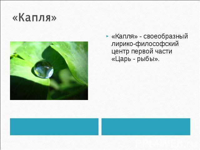«Капля» «Капля» - своеобразный лирико-философский центр первой части «Царь - рыбы».