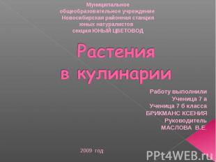 Муниципальное общеобразовательное учреждение Новосибирская районная станция юных