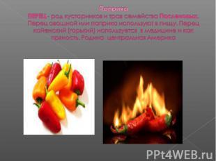Паприка ПЕРЕЦ - род кустарников и трав семейства Пасленовых. Перец овощной или п