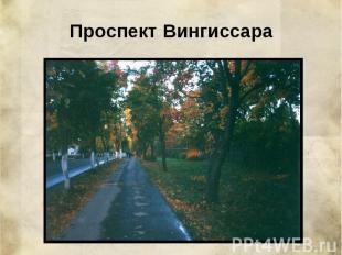 Проспект Вингиссара