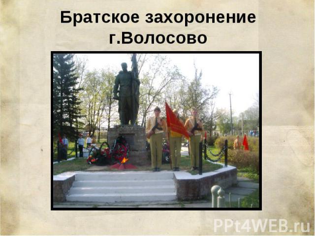 Братское захоронение г.Волосово