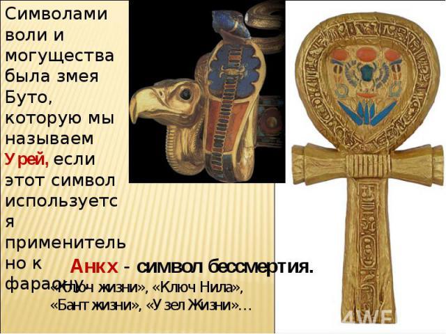 Символами воли и могущества была змея Буто, которую мы называем Урей, если этот символ используется применительно к фараону.Анкх - символ бессмертия. «Ключ жизни», «Ключ Нила», «Бант жизни», «Узел Жизни»…