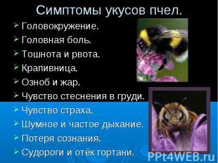Симптомы укусов пчел. Головокружение.Головная боль.Тошнота и рвота.Крапивница.Оз
