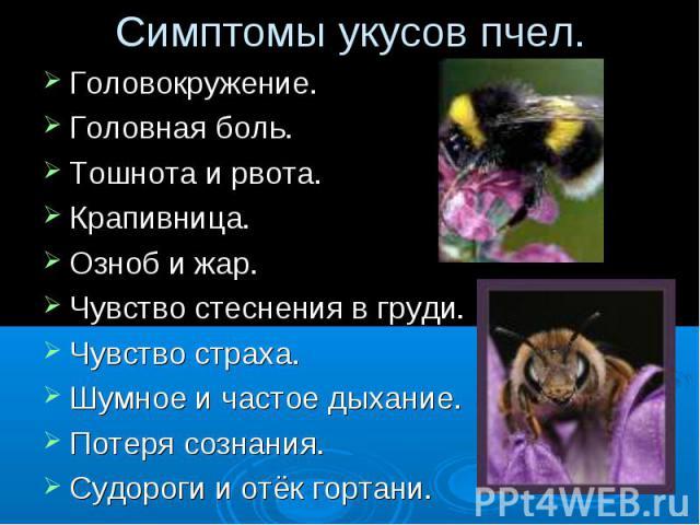 Симптомы укусов пчел. Головокружение.Головная боль.Тошнота и рвота.Крапивница.Озноб и жар.Чувство стеснения в груди.Чувство страха.Шумное и частое дыхание. Потеря сознания.Судороги и отёк гортани.