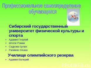 Профессиональное самоопределение обучающихся Сибирский государственный университ