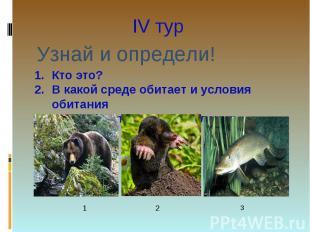 IV тур Узнай и определи!Кто это? В какой среде обитает и условия обитанияОсобенн
