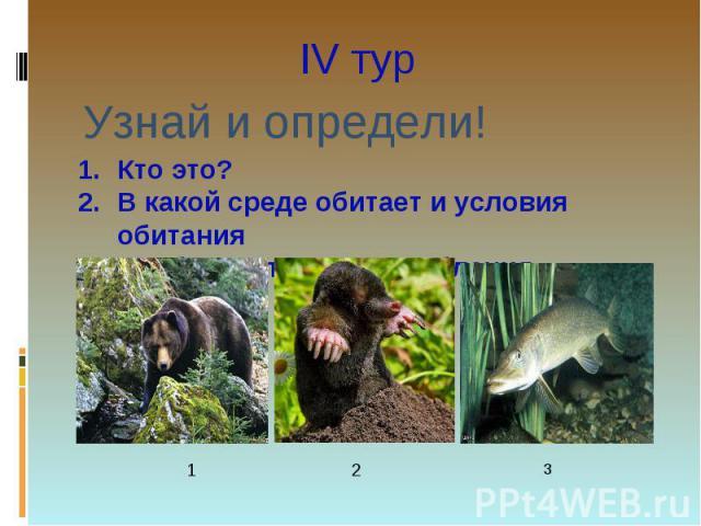 IV тур Узнай и определи!Кто это? В какой среде обитает и условия обитанияОсобенности приспособления.