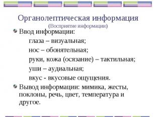 Органолептическая информация(Восприятие информации) Ввод информации:глаза – визу