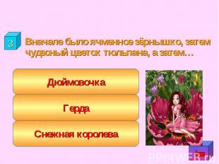 """""""Люди"""" Вначале было ячменное зёрнышко, затем чудесный цветок тюльпана, а затем…"""
