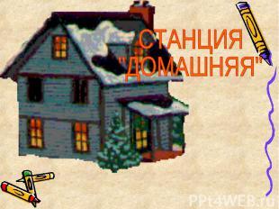 "СТАНЦИЯ""ДОМАШНЯЯ"""