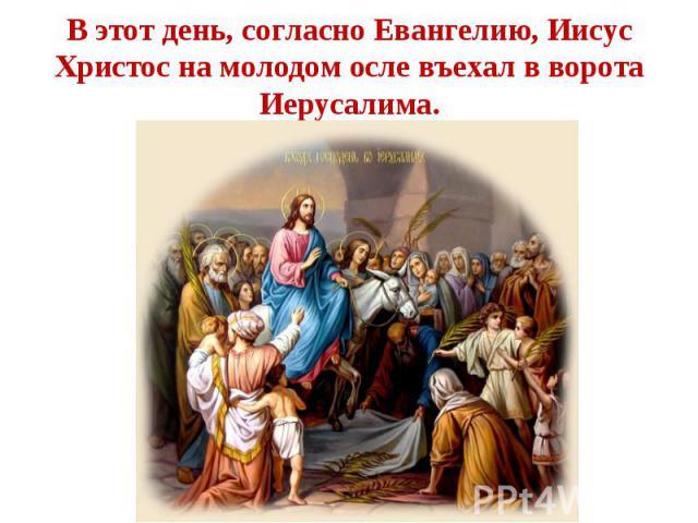 В этот день, согласно Евангелию, Иисус Христос на молодом осле въехал в ворота Иерусалима.