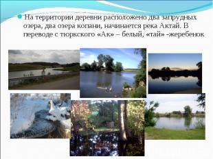 На территории деревни расположено два запрудных озера, два озера копани, начинае