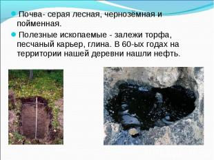 Почва- серая лесная, чернозёмная и пойменная.Полезные ископаемые - залежи торфа,