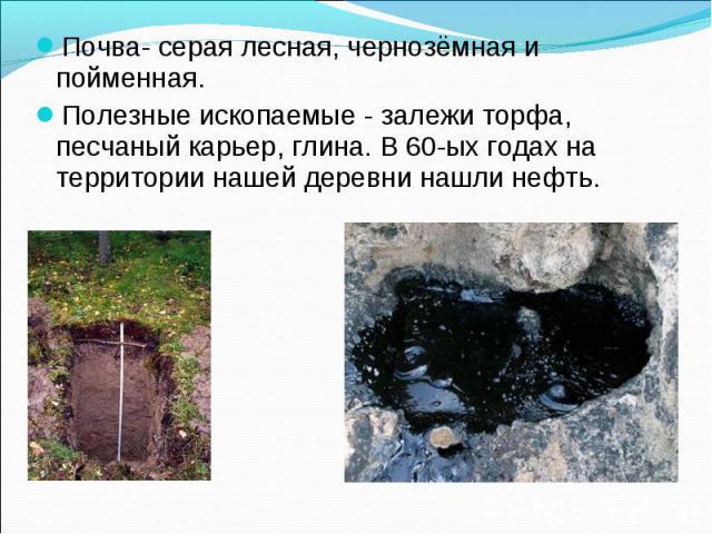 Почва- серая лесная, чернозёмная и пойменная.Полезные ископаемые - залежи торфа, песчаный карьер, глина. В 60-ых годах на территории нашей деревни нашли нефть.