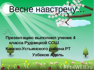 Весне навстречу… Презентацию выполнил ученик 4 класса Рудницкой СОШ Камско-Устьи