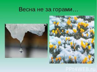 Весна не за горами…