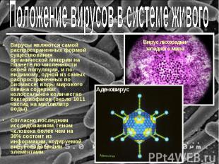 Вирусы являются самой распространенных формой существования органической материи