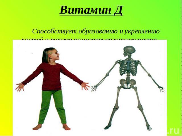 Витамин Д Способствует образованию и укреплению костей,а также помогает организму расти.