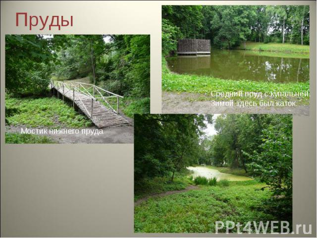 Пруды Мостик нижнего прудаСредний пруд с купальней.Зимой здесь был каток.