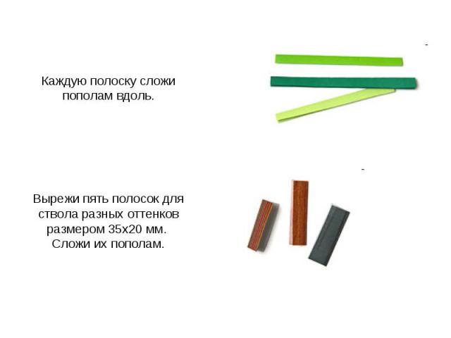 Каждую полоску сложи пополам вдоль. Вырежи пять полосок для ствола разных оттенков размером 35х20 мм. Сложи их пополам.