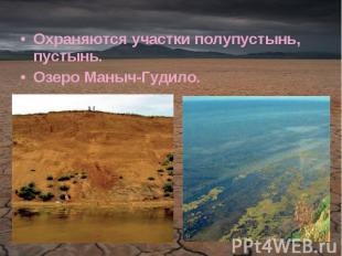 Охраняются участки полупустынь, пустынь.Озеро Маныч-Гудило.