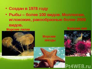 Создан в 1978 годуРыбы – более 100 видов. Моллюски, иглокожие, ракообразные боле