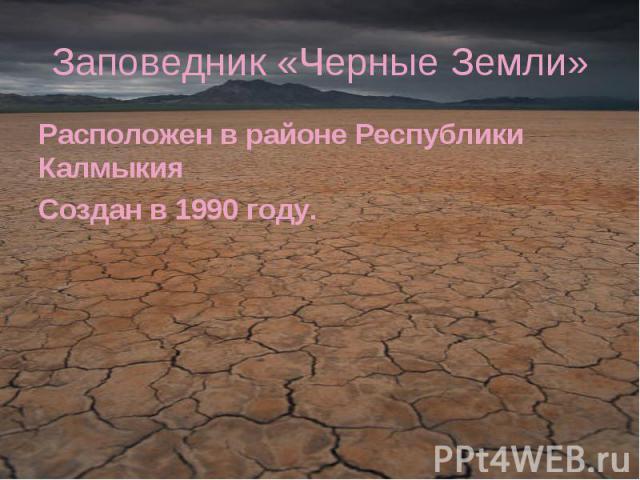 Заповедник «Черные Земли» Расположен в районе Республики КалмыкияСоздан в 1990 году.