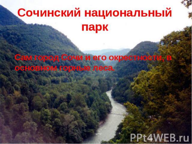 Сочинский национальный парк Сам город Сочи и его окрестности, в основном горные леса.