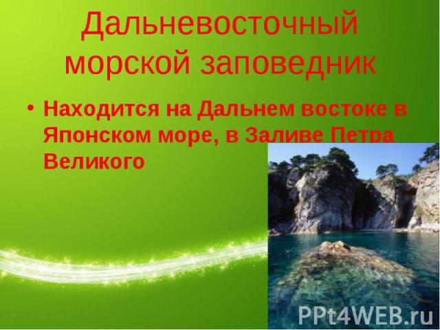 Дальневосточный морской заповедник Находится на Дальнем востоке в Японском море, в Заливе Петра Великого