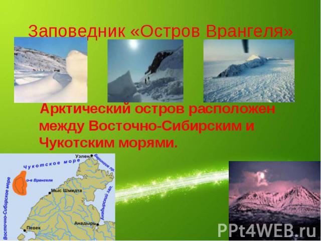 Заповедник «Остров Врангеля» Арктический остров расположен между Восточно-Сибирским и Чукотским морями.