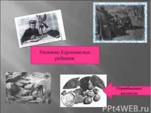 Раскопки Каргалинских рудниковПервобытные моллюски