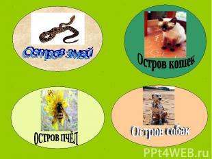 Остров змейОстров кошекОСТРОВ ПЧЁЛОстров собак