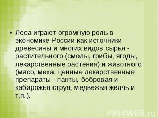 Леса играют огромную роль в экономике России как источники древесины и многих ви