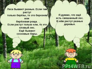 Леса бывают разные. Если там растуттолько берёзы, то это березняк или берёзовая