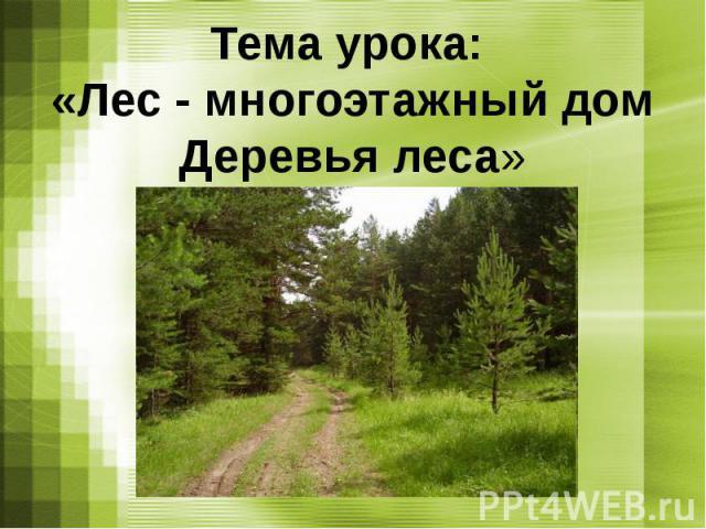 Тема урока: «Лес - многоэтажный домДеревья леса»