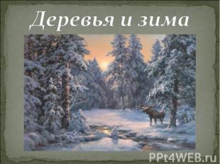 Деревья и зима