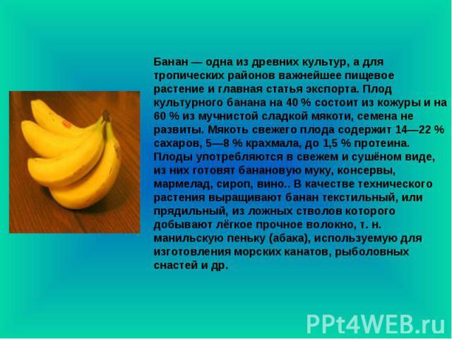 Банан — одна из древних культур, а для тропических районов важнейшее пищевое растение и главная статья экспорта. Плод культурного банана на 40 % состоит из кожуры и на 60 % из мучнистой сладкой мякоти, семена не развиты. Мякоть свежего плода содержи…