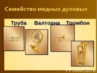 Семейство медных духовых Труба Валторна Тромбон Туба