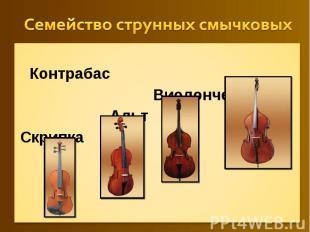 Семейство струнных смычковых Контрабас Виолончель АльтСкрипка