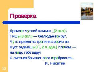 Проверка Дремлет чуткий камыш _(2 скл.).Тишь (3 скл.) — безлюдье вокруг.Чуть при