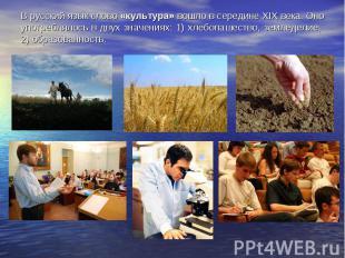 В русский язык слово «культура» вошло в середине XIX века. Оно употреблялось в д