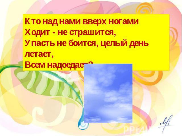 Кто над нами вверх ногами Ходит - не страшится, Упасть не боится, целый день летает, Всем надоедает?