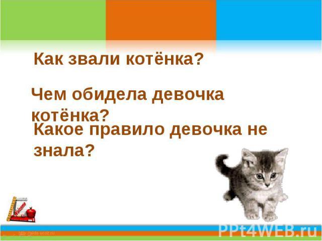 Как звали котёнка?Чем обидела девочка котёнка?Какое правило девочка не знала?