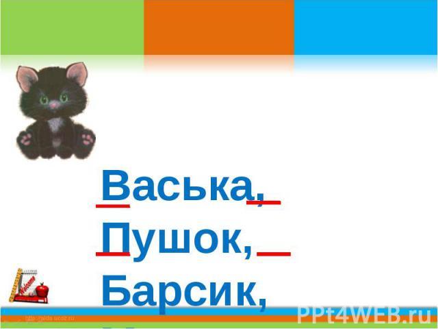 Васька, Пушок, Барсик, Мурзик