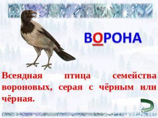 ВОРОНА Всеядная птица семейства вороновых, серая с чёрным или чёрная.