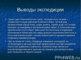 Выводы экспедиции Существует биологическая связь Таганрогского залива с северо-в