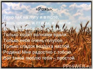 «Рожь»: Тихо так на лугу и в поле,Лишь цветы, и птицы, и шмели.Рожь еще не сжали